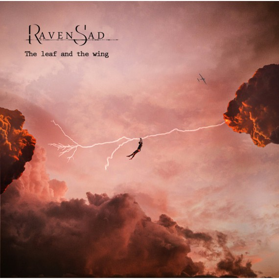 Raven-Sad-Leaf-And-Wing
