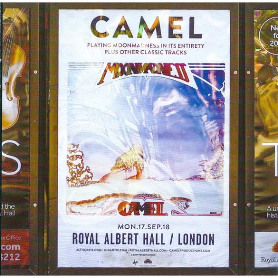 Camel-Live-At-The-Royal-Albert-Hall
